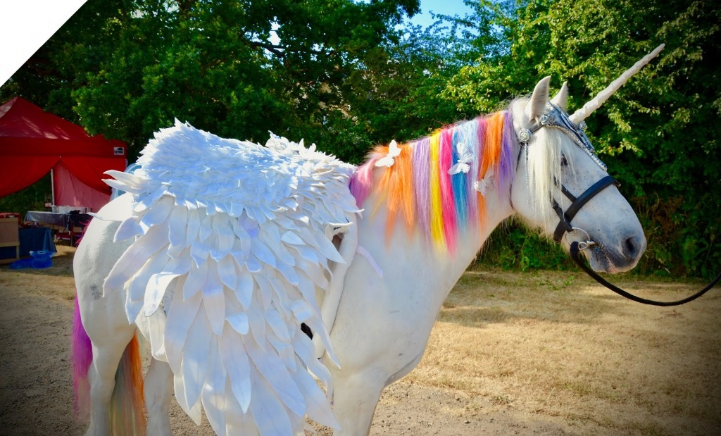 Catsurveys-blog-fantastic-fun-at-CATFEST-2018-unicorn