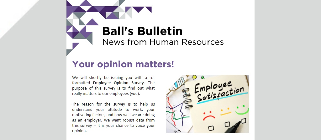 Catsurveys-catching-up-with-the-HR-Department-Michelle-Ball-Blog-Balls-Bulletin
