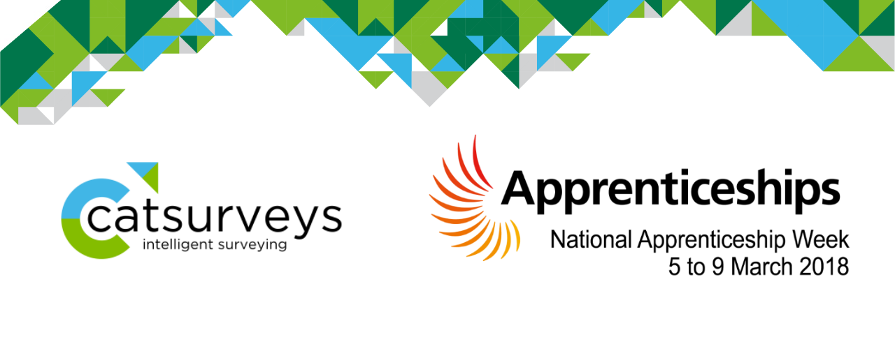 Catsurveys-National-Apprenticeship-Week-2018-NAW2018-Blog