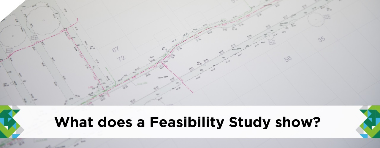 What-does-a-Feasibility-Study-show-benefits-catsurveys